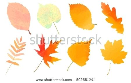 450x286 Fall Leaves Clip Art Images Autumn Leaves Corner Border Autumn