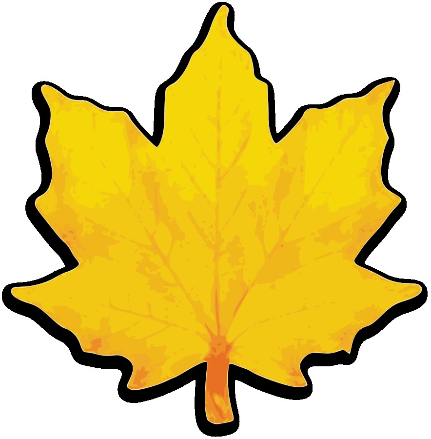 884x900 Maple Leaf Clipart Magnificent