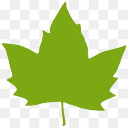 260x260 Maple Leaf Green Clip Art