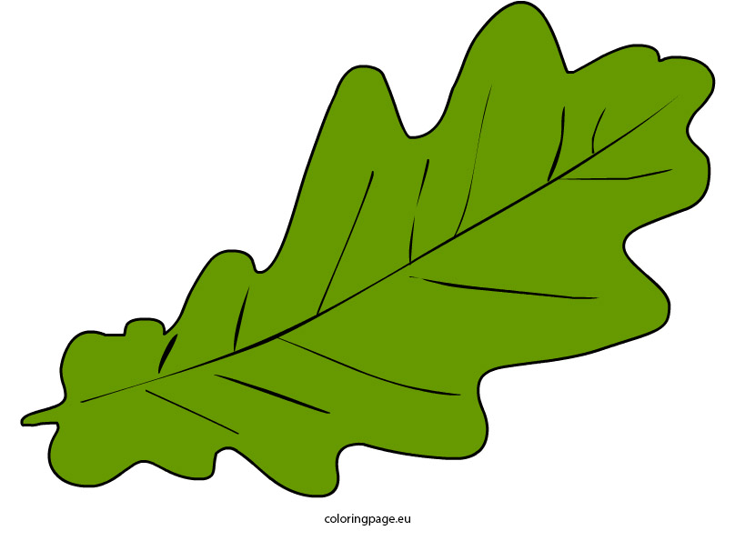 808x595 Top 80 Autumn Leaf Clip Art