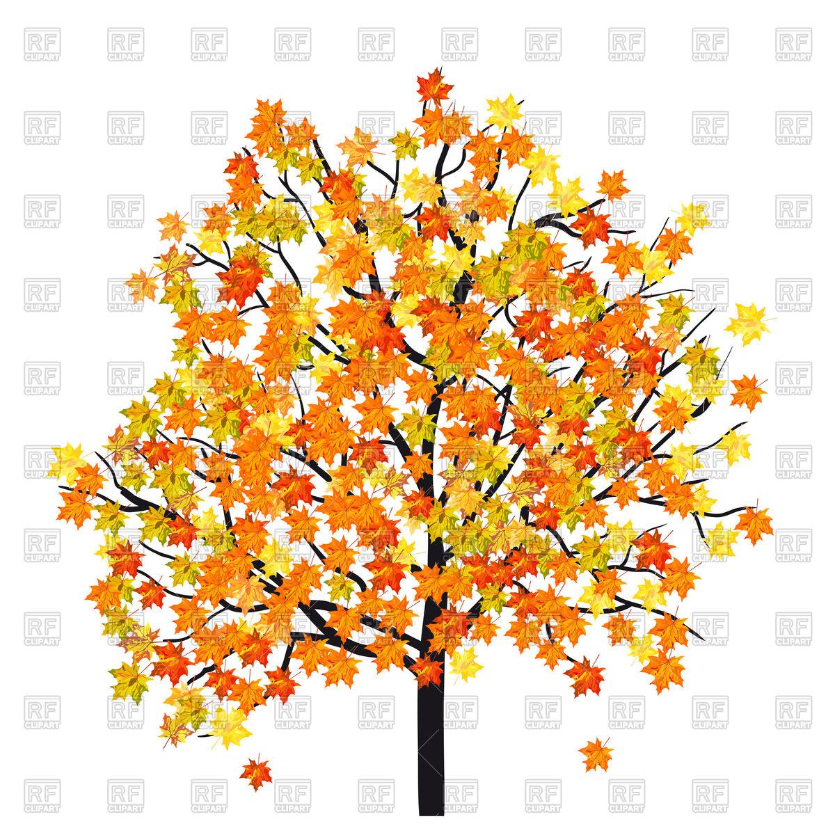 1200x1200 Autumn Maple Tree Royalty Free Vector Clip Art Image
