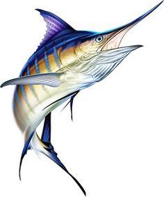 236x282 Marlin Clipart Blue Marlin, Photoshop And Fish