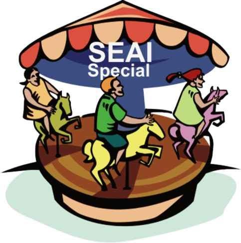 483x486 Sustainable Energy Author Ireland (Seai) Seai Merry Go Round