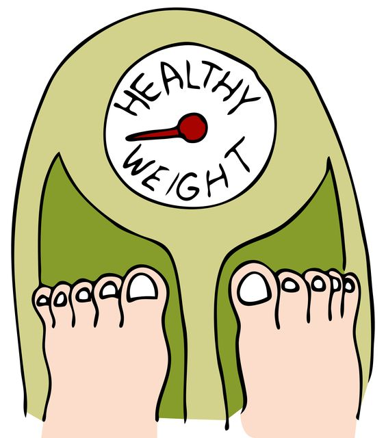 564x640 Weight Loss Clipart