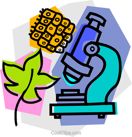 461x480 Microscope With Leaf Royalty Free Vector Clip Art Illustration