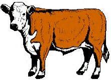 221x160 Dairy Cow Clip Art Animals Clip Art