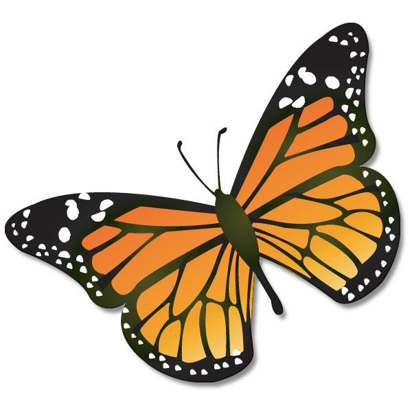 monarch butterfly clipart at getdrawings com free for personal use rh getdrawings com monarch butterfly clipart black and white monarch butterfly clipart transparent background