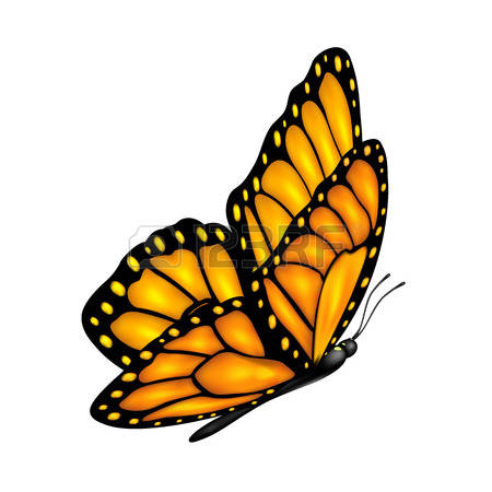 450x450 Realistic Butterfly Flying Clipart Amp Realistic Butterfly Flying