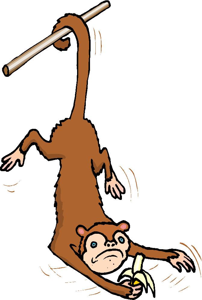 671x992 Monkeys Clip Art Farm