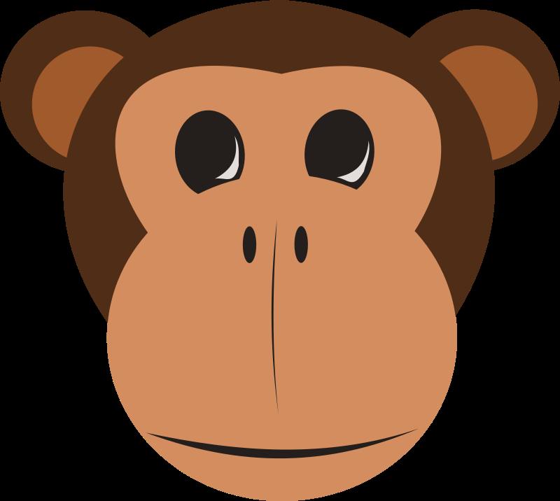 800x716 Free Clipart Monkey Face Stevepetmonkey