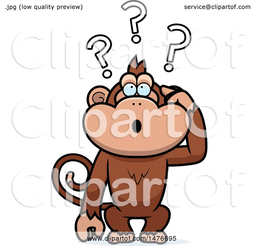 1080x1024 Clipart of a Confused Monkey Scratching His Head