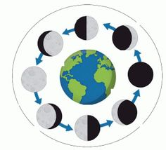 236x214 Free Moon Phases Cycle Real Photos Clipart {Zip A Dee Doo Dah