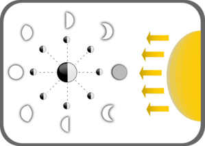299x213 Diagram Of Moon Phases Clip Art