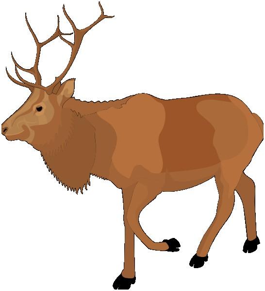 546x598 Free Moose Clipart New Moose Silhouette Clip Art Vector Clip Art