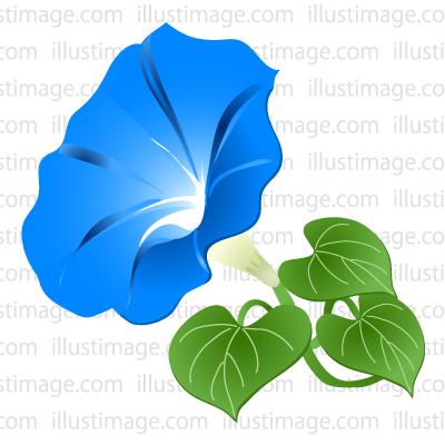 400x400 Free Morning Glory Flower Cartoon Amp Clipart Amp Graphics