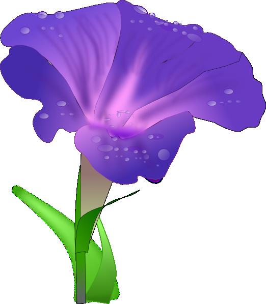 522x598 Morning Glory Flower Clip Art