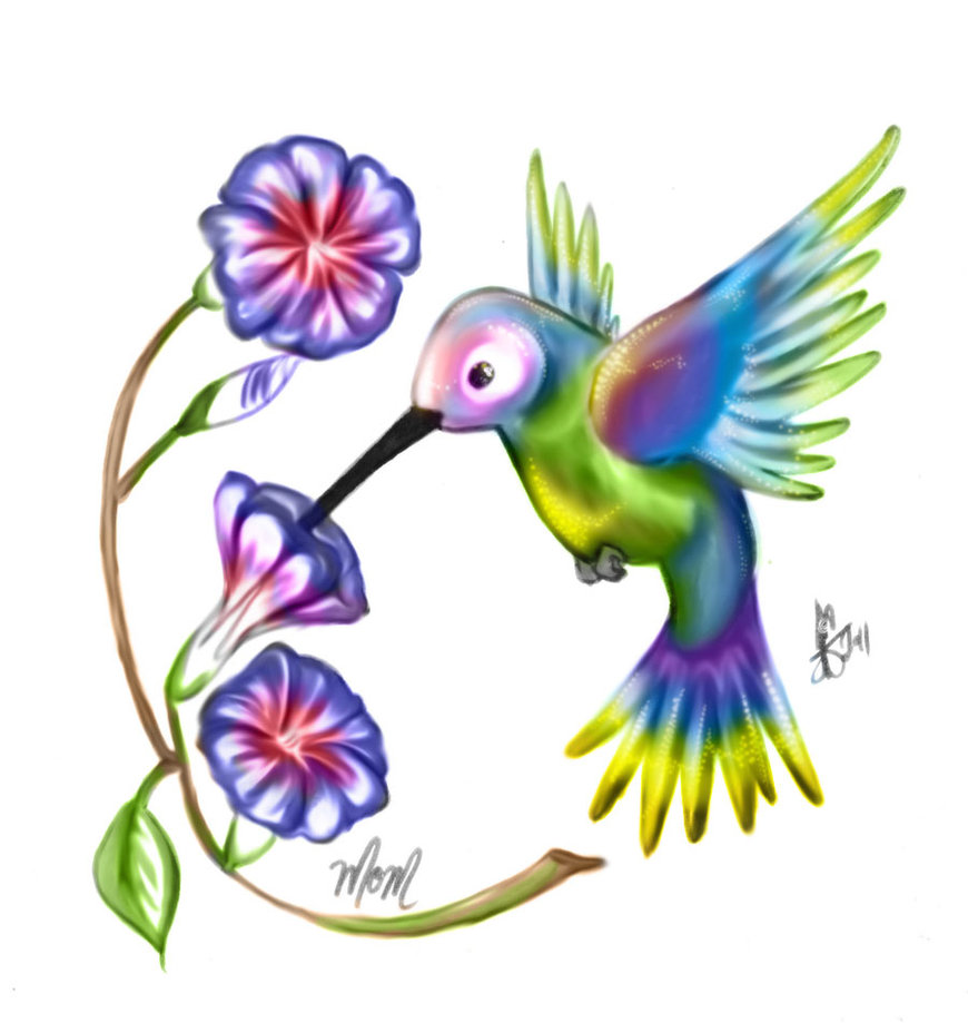 870x919 Humming Bird And Morning Glory By Thetepster