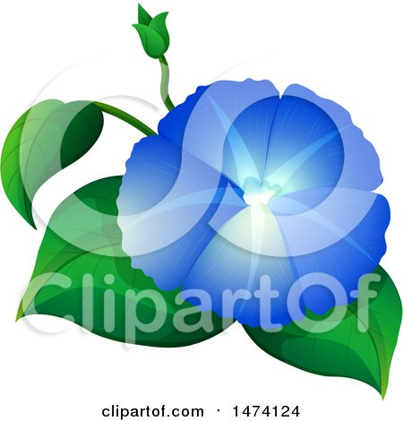 450x470 Clipart Pink And Blue Morning Glory Flowers
