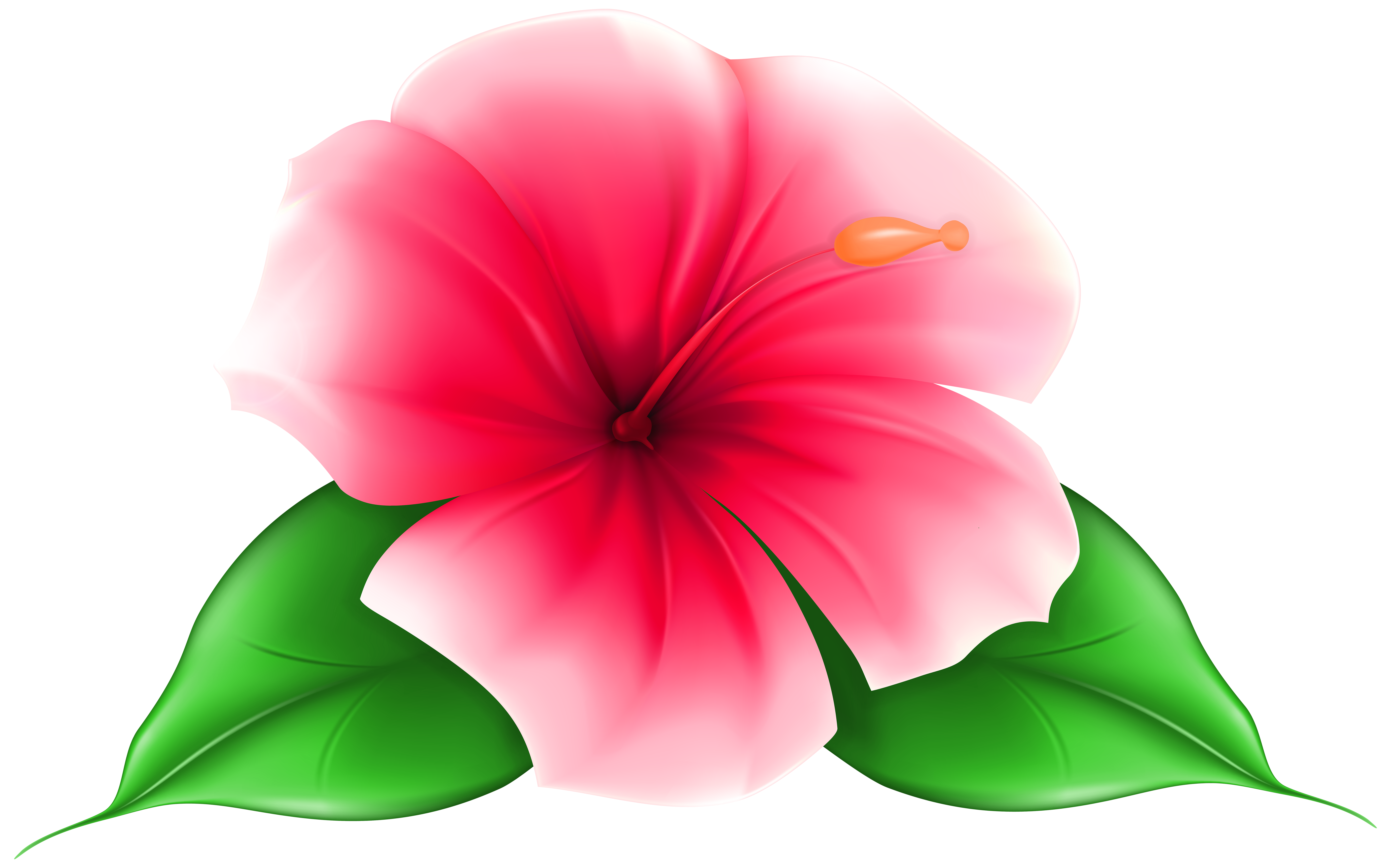 7000x4371 Exotic Flower Png Clip Art Imageu200b Gallery Yopriceville