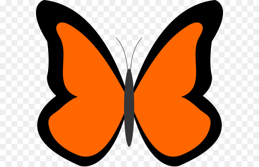 900x580 Butterfly Drawing Clip Art