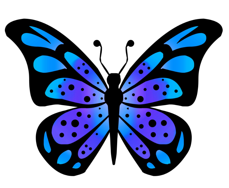 788x650 Butterfly Images Clip Art