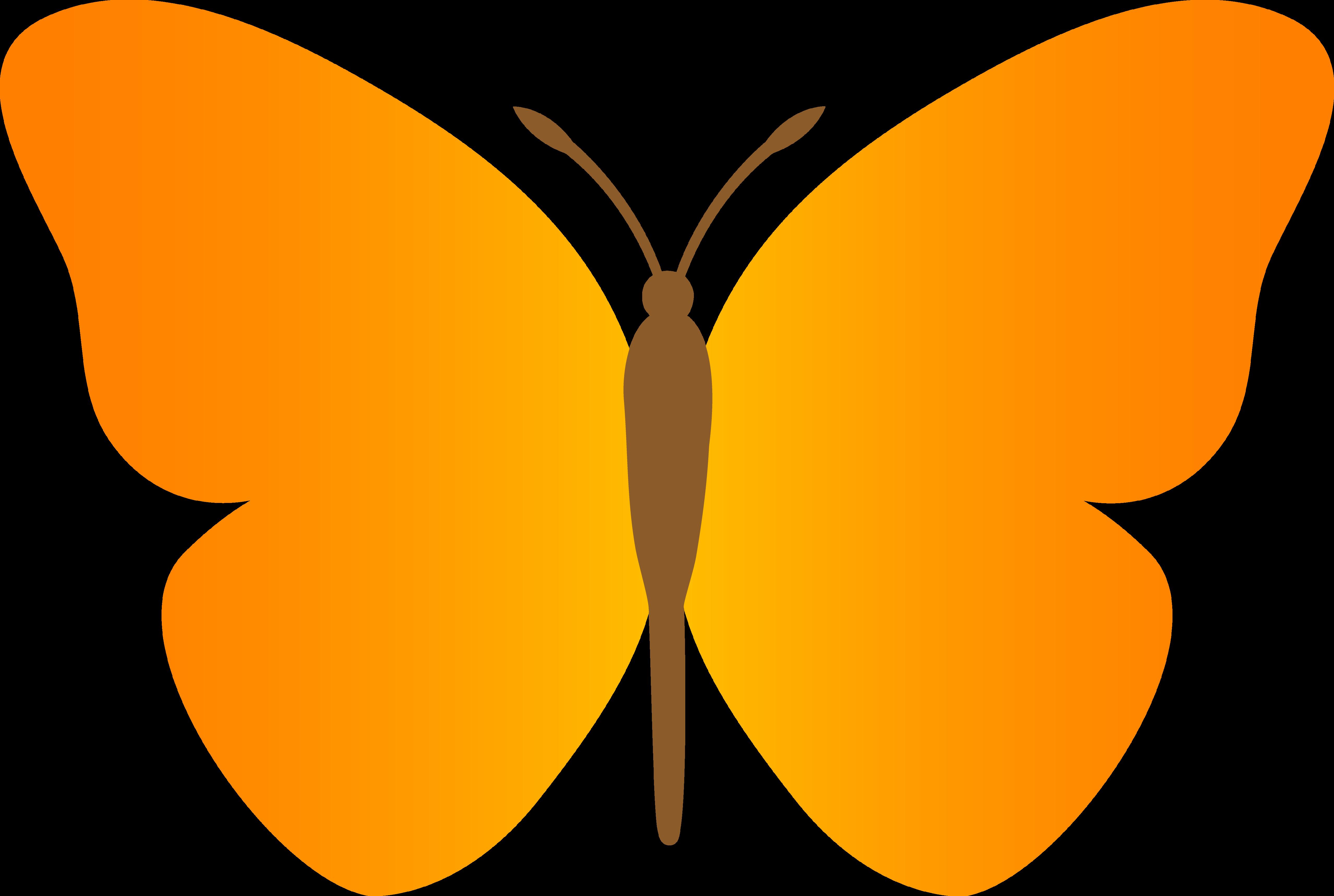 5112x3433 Butterfly Cartoon Clipart