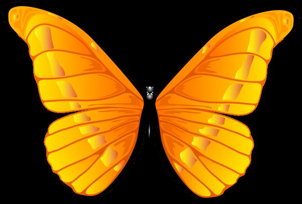 600x406 Clipart Butterfly Butterflies Clipart Art Images
