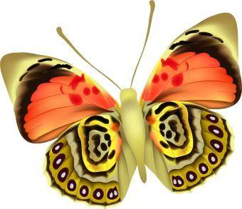 340x293 Colorful Moth Clip Art Moths