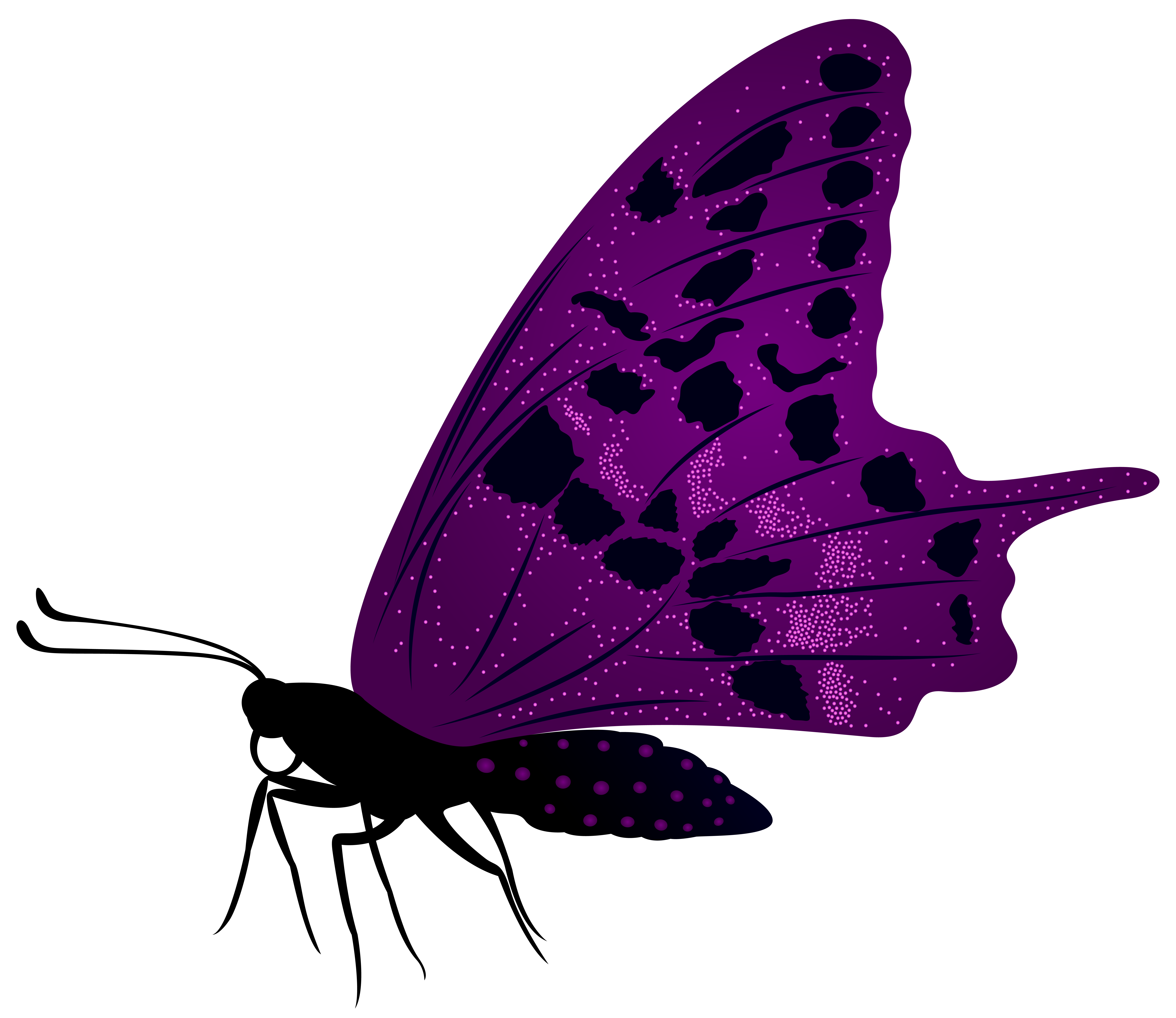 7917x6851 Large Purple Butterfly Png Clip Art Imageu200b Gallery Yopriceville
