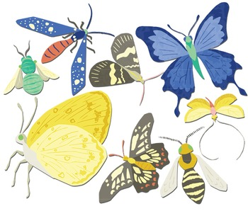 350x298 Bees Butterflies Moths, Butterfly Clipart, Insect Clipart, Bug Clipart