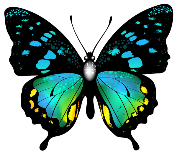 600x519 Blue Colorful Butterfly Png Clip Art Image Graphics