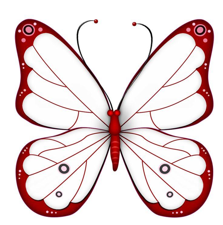 736x742 Bud Moths Clipart