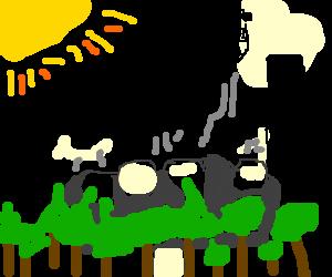 300x250 Mount Rushmore