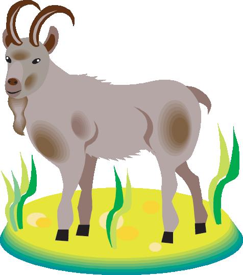 476x538 Mountain Goats Resources (Science Trek Idaho Public Television)