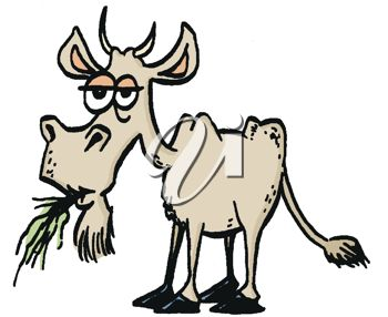 350x286 Picture Of A Goat Chewing On Grass In A Vector Clip Art