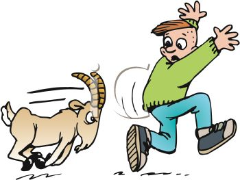 350x263 Billy Goat Clipart Angry