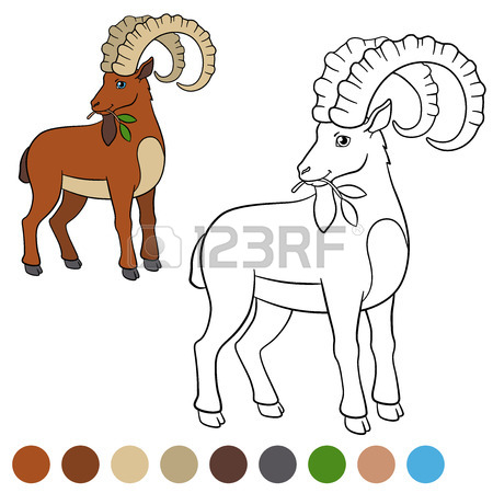 450x450 Billy Goat Clipart Ibex