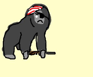 300x250 Captain Hook The Biker Gorilla