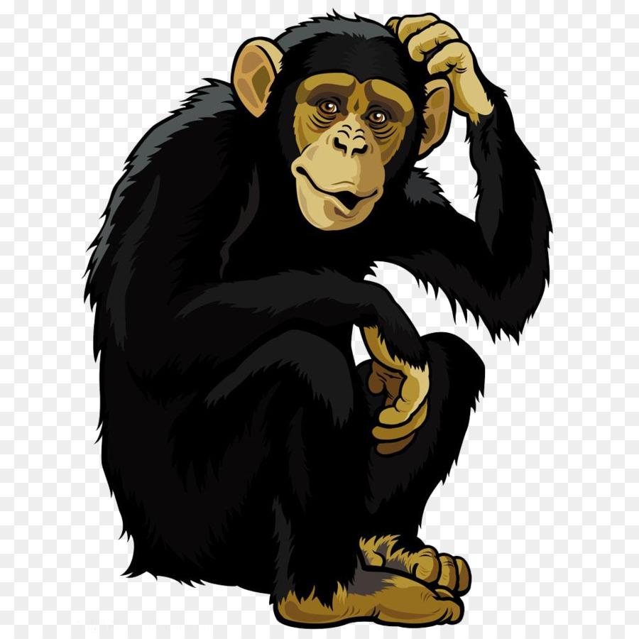 900x900 Orangutan Monkey Chimpanzee Clip Art