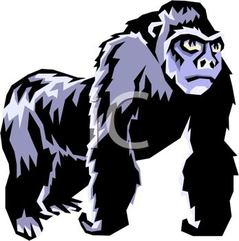 347x350 Picture Of A Gorilla Standing On A White Background In A Vector