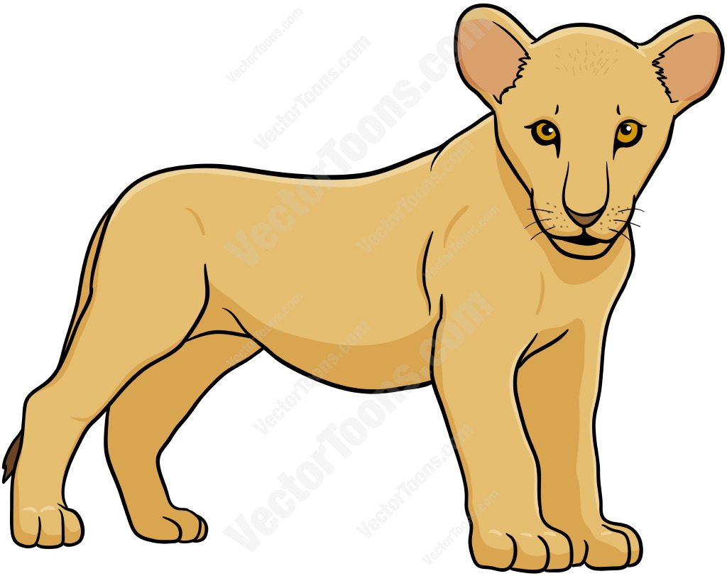 1024x811 Mountain Lion Clipart Female Lion