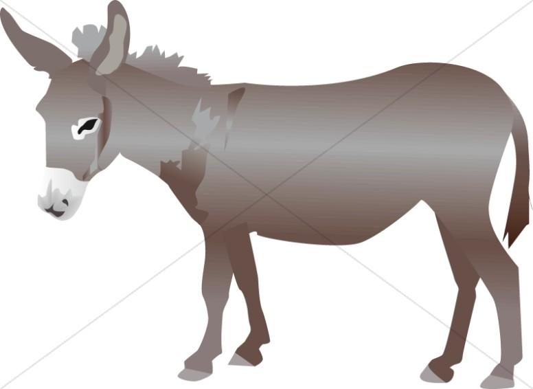 776x566 Nativity Donkey Nativity Clipart
