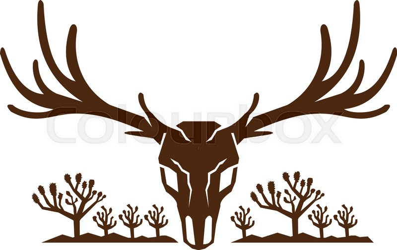 800x504 Icon Style Illustration Of Mule Deer Skull Viewed From Front