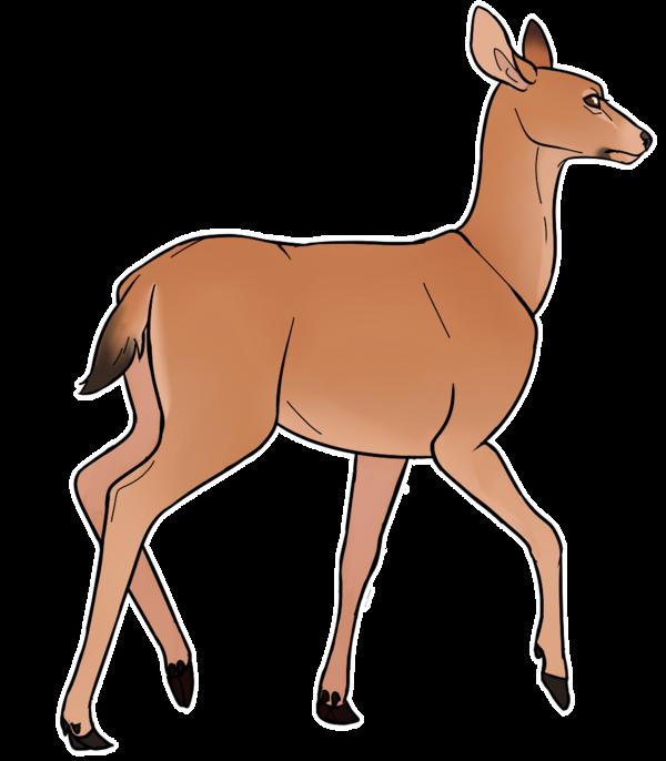 600x686 Mule Doe By Kajuale