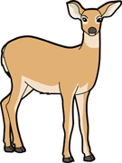 135x180 Collection Of Mule Deer Clipart High Quality, Free Cliparts