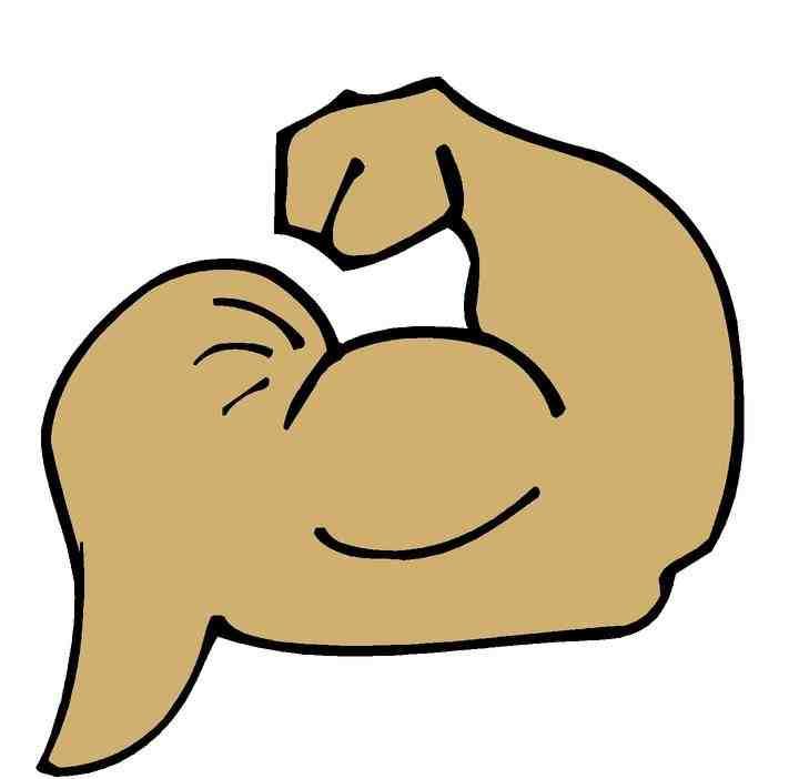 720x702 Clip Art Muscular Clipart