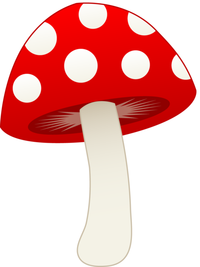 413x550 Red And White Mushroom