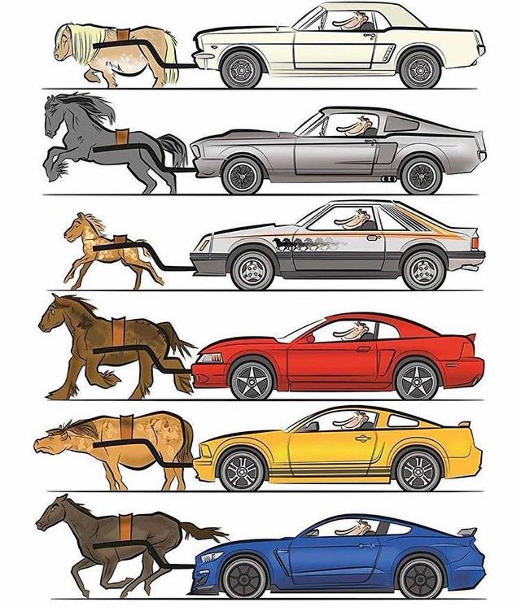 1023x1200 Eric Wu On Twitter Choose Your Mustang @all Friends