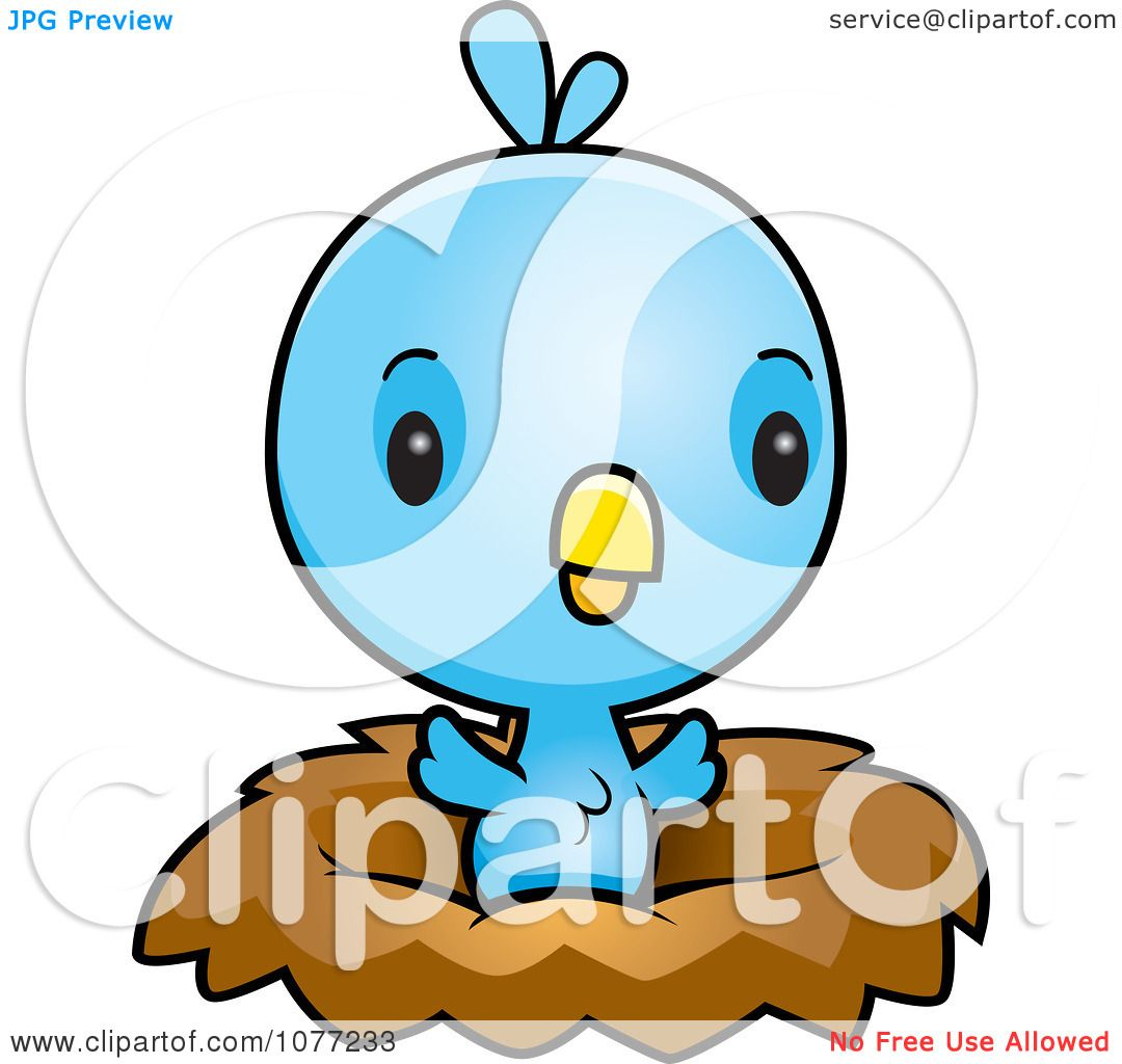 1080x1024 Clipart Cute Baby Blue Jay Chick In A Nest