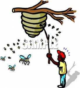 274x300 Wasp Nest Clipart